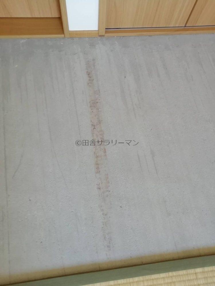 コンクリート床にできたカビ
